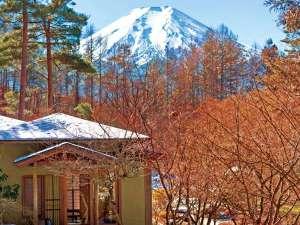 当館の日本庭園から望む冠雪の富士山(冬季は富士山の眺望確率が高まります)