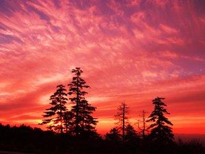 客室から望む絶景の夕焼け