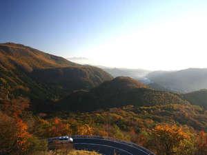 【いろは坂(秋)】日光の紅葉の名所です!