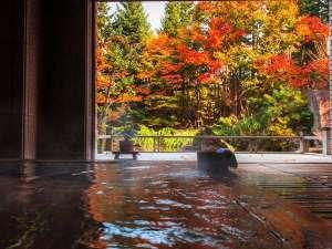 秋には紅葉を愛でながらの湯浴みも