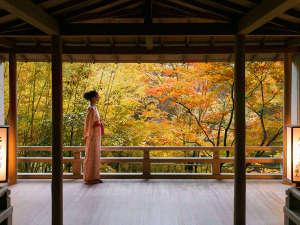 柔らかな秋風に吹かれながら、こころ潤い、満たされる『非日常の癒し』を存分にお楽しみください