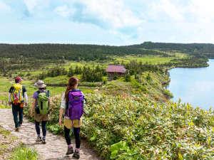 【八幡平トレッキング】大自然を身体で感じながら、高山植物や眺望もお楽しみください♪