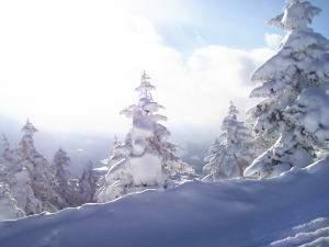 たかつえスキー場山頂付近
