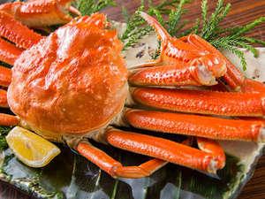ずわい蟹1杯付き会席~冬の王様を丸ごと味わう~