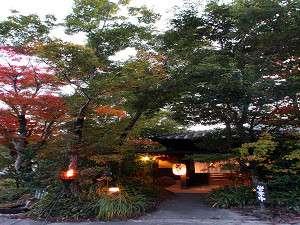 【外観】木々と清流に囲まれた奥阿蘇の宿で普段とは違った一日をお楽しみください