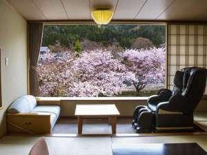 お部屋からの眺望「桜景色」