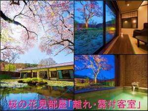 ●桜の花見部屋!温泉露天付客室!夜はライトアップで夜桜!4/20頃開花・4/25頃満開・4/28頃桜吹雪!