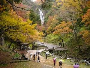神庭の滝(新緑の時期と違って紅葉の時期もとっても綺麗です。)