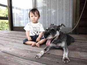 ペットプラン♪愛犬とご一緒にご一泊出来ます。