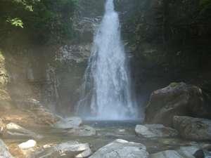笹の滝マイナスイオンタップリの滝のシャワー