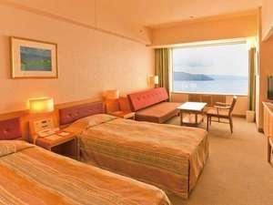 ソファーベッド利用で3名まで宿泊可能なツインルームB