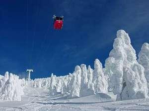 蔵王温泉スキー場・東北最大級!初心者から上級者まで楽しめます。季節によっては樹氷も見られます♪