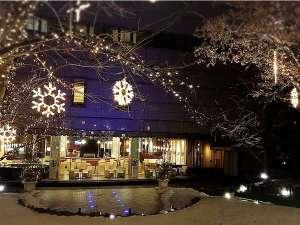 カフェセゾンの庭に灯るイルミネーション(冬季)
