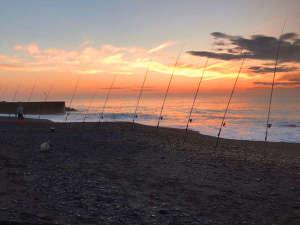*【釣り】広尾町周辺では時期によってさまざまな種類の魚介類を釣ることができます。