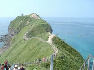 積丹を代表する景勝地の神威岬。恐竜の首の上を歩くように続く遊歩道が人気です