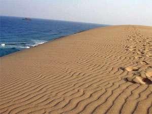さわやかに、早朝の鳥取砂丘をお散歩