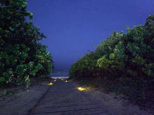 緑の先に広がるパノラマの海と星空