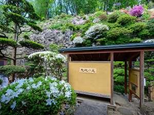 【御殿守歳時記】中庭「大地の庭」は丁寧に手入れを行っており四季折々の花が楽しめます。