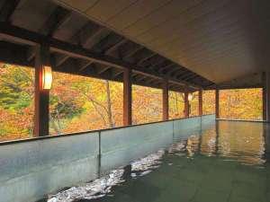【露天風呂】本館・湯酔郷-秋の紅葉シーズンは紅葉もご覧いただけて◎