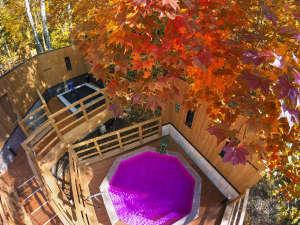 【森の散歩湯WOOD SPA】秋は色とりどりの紅葉をお楽しみいただけます。