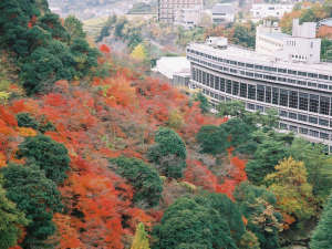 <秋>紅葉シーズンは特にオススメ!美しい錦に染まる山々を眺めながらの露天温泉は最高です