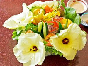 **女将が愛情をたっぷり注いで育てた無農薬の野菜たち