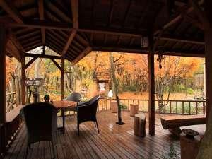 【だんぶり茶屋 秋】茶屋からお散歩もできます♪紅葉の絨毯を歩いてみては?