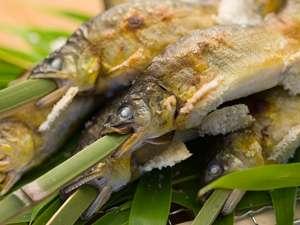 夏の味覚「鮎」の塩焼き