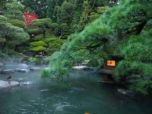 季節の移り変わり毎に様々な趣を楽しめる廻遊式日本庭園。早めにご来館されて散歩されるのもおすすめ。