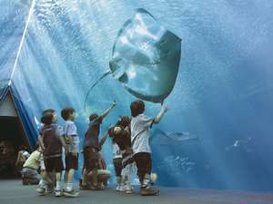 水族館「アクアマリンふくしま」