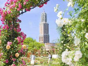47本のバラのアーチをくぐりながら豊かな香りを楽しむ