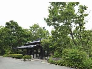 麻生釣温泉 亀山の湯・宿:写真
