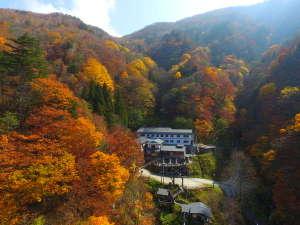 新高湯温泉 五つの絶景露天風呂 吾妻屋旅館