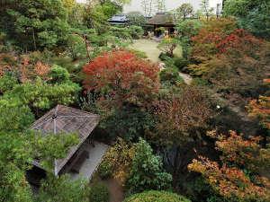 自然が残るふなやの庭園には川が流れ四季折々の風情をお楽しみいただけます。【12月頃】