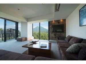 アパートメントのリビングルームから眺める新緑の羊蹄山(一例)