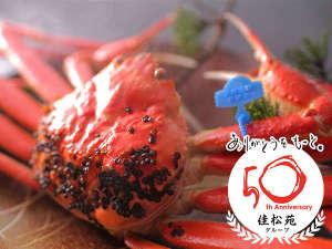 佳松苑グループは今年50周年を迎えます