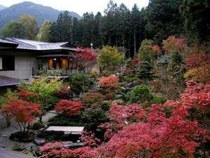 四季折々に移り変わる大自然に囲まれた当館自慢の中庭