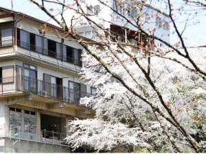 世界遺産 吉野山 眺望風呂と桜の宿 一休庵の画像