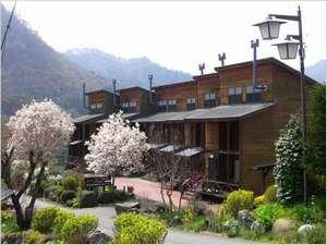 猿ヶ京温泉 格安宿泊案内 天然温泉100%掛け流し 木造の宿 ガルニ