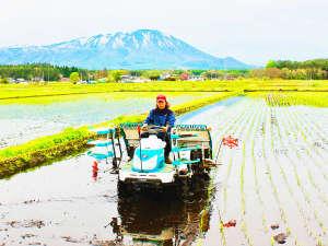 ・お米はオーナー一家が田んぼで自家栽培しています