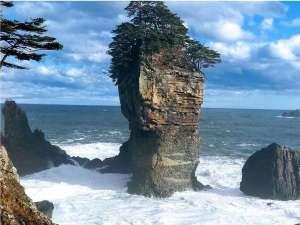 当館から徒歩約15分の海岸景勝地!国立公園内に位置し、県指定天然記念物の三王岩。