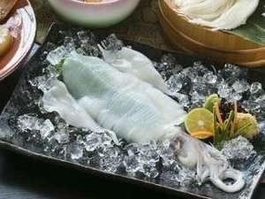 【夏限定】コリコリとした食感と肉厚で甘い、朝どれのピチピチ白いかは、姿造りで!
