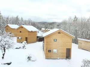 冬の朝のニングルハウス