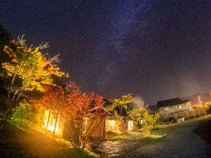 澄んだ空気に煌めく星空のなか、赤黄色の木の葉が鮮やかに映える。秋だけ出逢える【夜空のコントラスト】