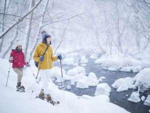 【冬】奥入瀬渓流の雪景色を楽しむ渓流散策ツアー
