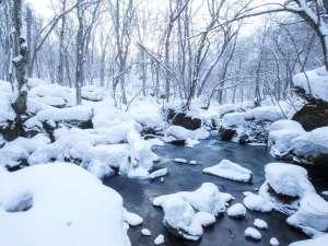 【奥入瀬渓流】冬には岩の上に雪が綿帽子のように積もり幻想的な風景となります。