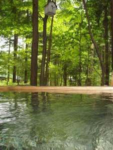 檜の貸切露天「森林」は24Hいつでも貸切できます。(素泊まりプランおすすめ)