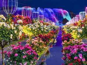 【5/12~6/3】2000品種120万本のバラ祭