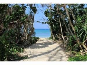 目の前の海へ続く小径。徒歩10秒で白い砂浜、エメラルドグリーンのビーチへ。