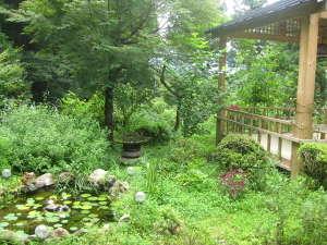 庭の池と東屋
